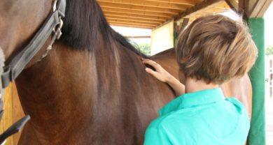 Osteopathie, Akupunktur u.-o. Massage, Erstbehandlung/ Folgebehandlung