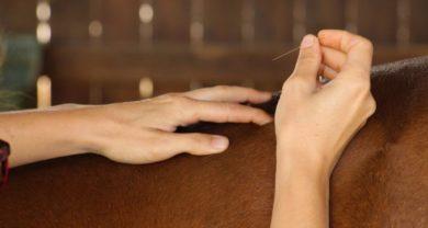 Akupunktur, Erstbehandlung/ Folgebehandlung